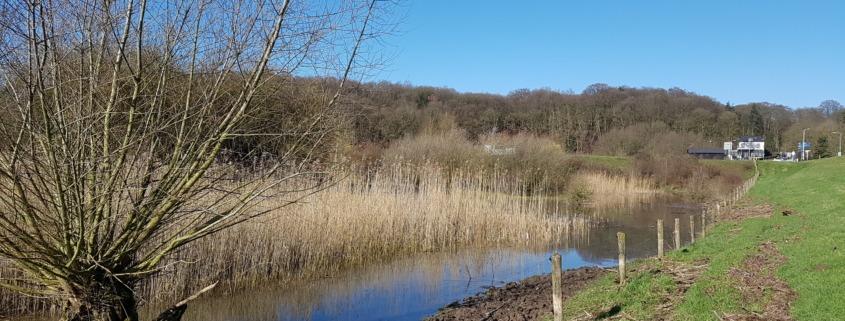 Buitendijkse deel Hoornwerk aan de voet van de Grebbeberg
